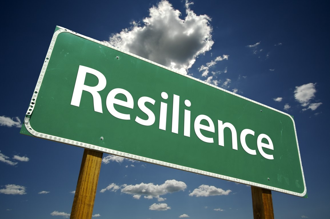 Law firm resilience